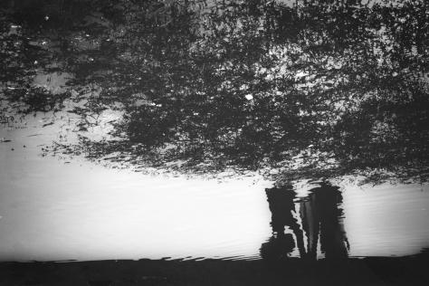 The Fog_Visual Arts_Photography