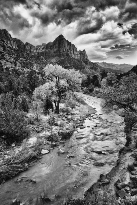 Zion's Watchman_Visual Arts_Photograph